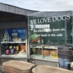 We Love Dogs - The Lookout